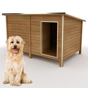 Hundehütte isoliert