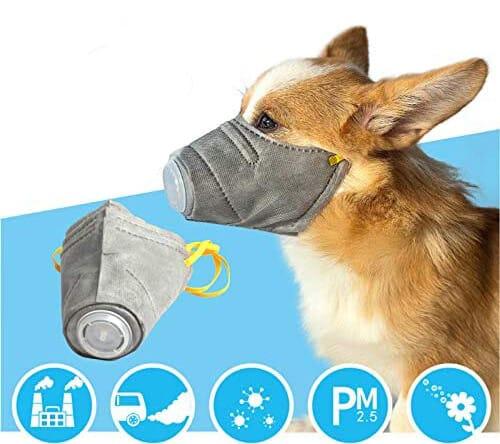 Atemschutzmaske Hund